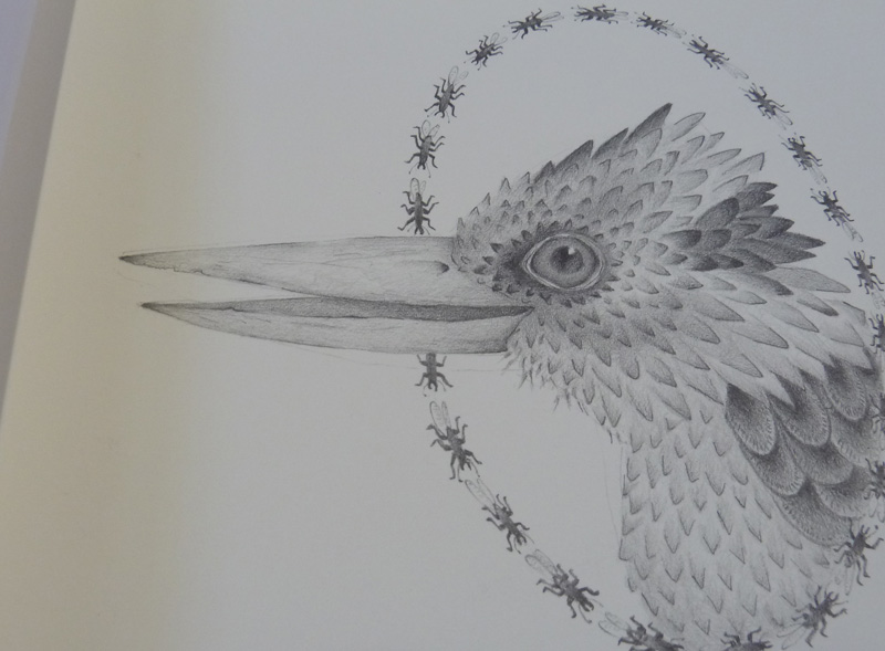 Louise Jennison, page detail from A Year of Southern Hemisphere Birds, 2013, artists' book