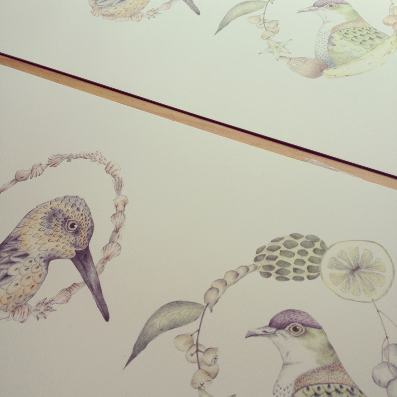 Louise Jennison, A Flight of Twelve Southern Hemisphere Birds, 2013, artists' book in progress