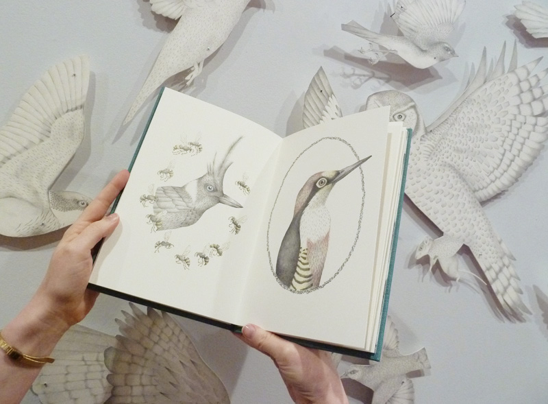 Louise Jennison, A Flight of Twelve Southern Hemisphere Birds, 2013, artists' book