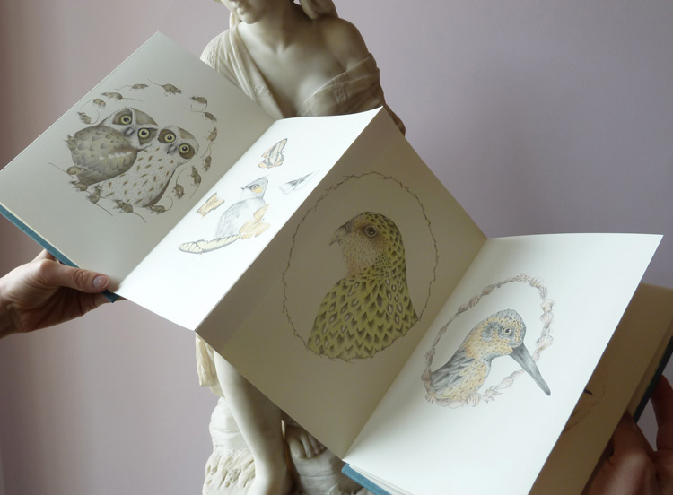 Louise Jennison,   A Flight of Twelve Southern Hemisphere Birds  , 2013, artists' book