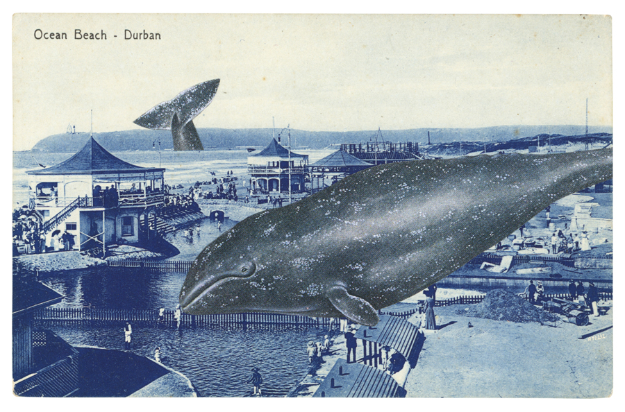Gracia Haby, The Durban Flop, 2012, postcard collage from the zine A Postcard as Measuring Device, 2013