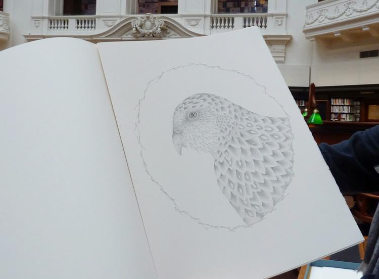 gracialouise_birds34.jpg