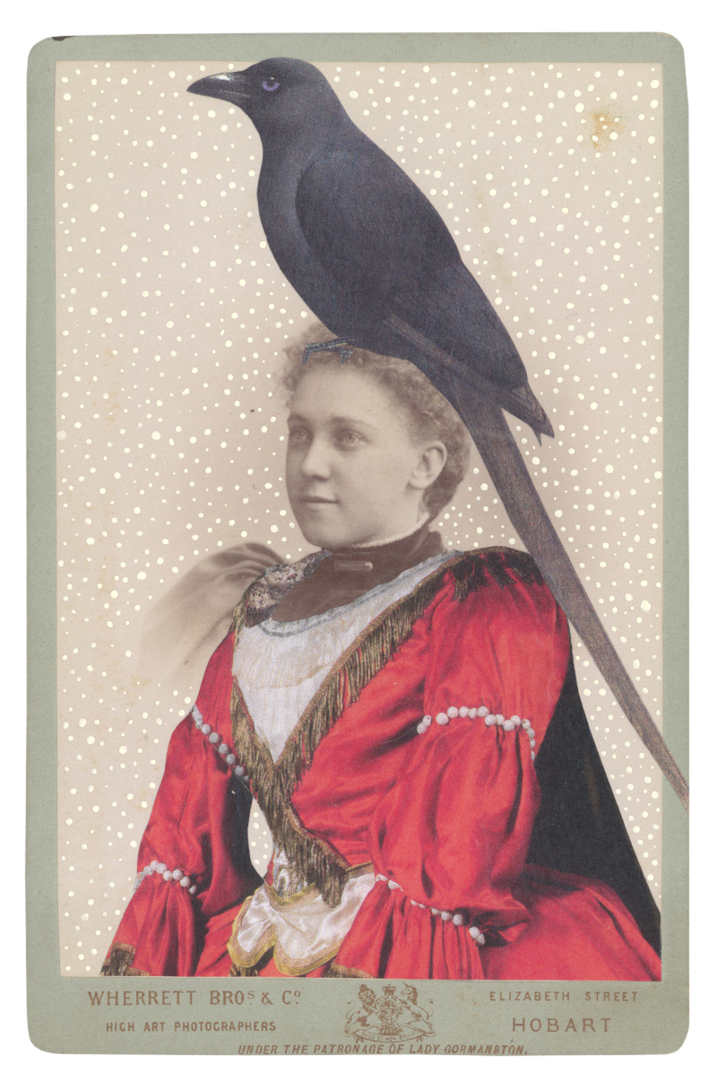 Gracia Haby & Louise Jennison,  In the borrowed costume for a lady-in-waiting, c. 1921, designed by Léon Bakst, with a Piapiac (Ptilostomus afer) , collage on cabinet card from the artists' book,   Salvaged Relatives , edition I , 2014–2015
