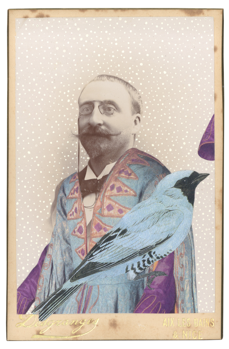 Gracia Haby, In the borrowed costume for Shah Zeman from Schéhérazade, 1910–30s, with a Swallow-tanagier (Tersina viridis), 2015, collage on cabinet card