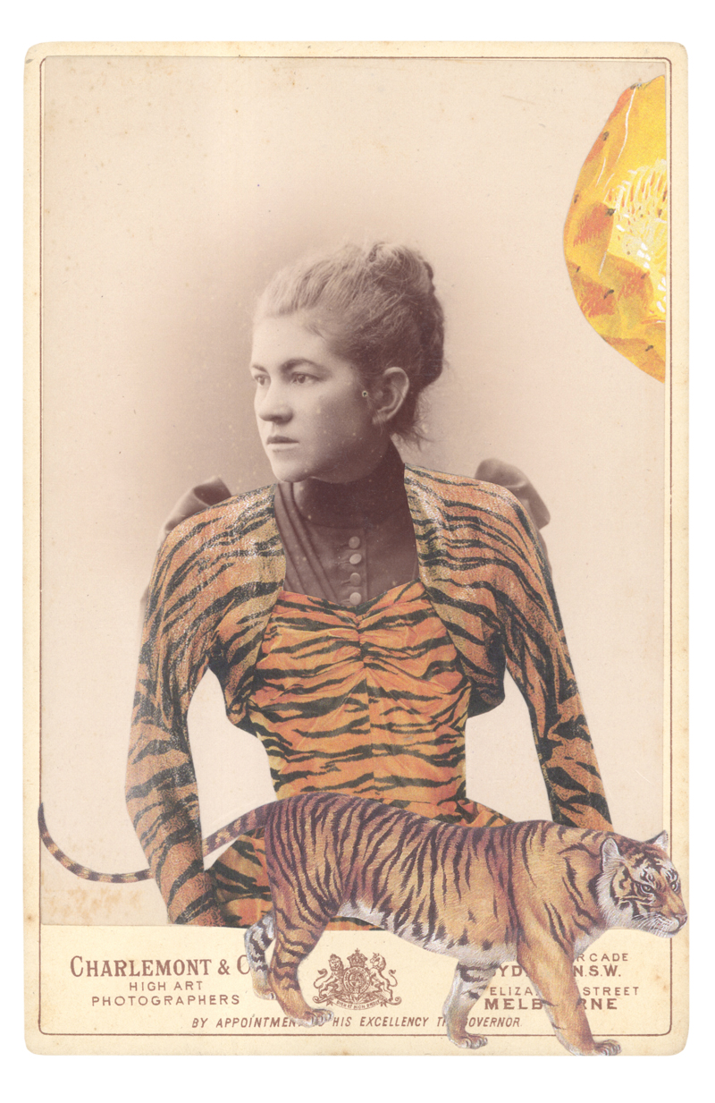 Gracia Haby, In the Tigress Evening Ensemble by Gilbert Adrian, 1949, the tiger (Panthera tigris) is my spirit animal, 2015, collage on cabinet card
