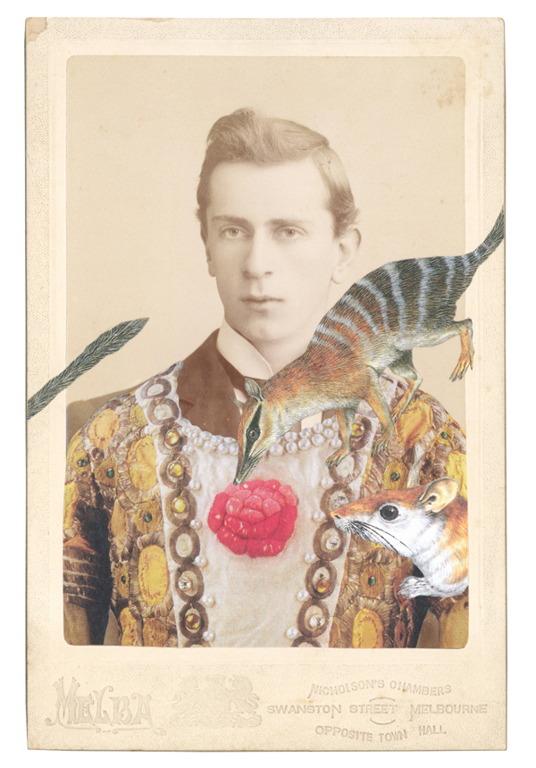 One of four new greeting card designs featuring the Salvaged Relatives collage, In the modified costume for the Prince in L'Oiseau d'Or from Le Festin, c. 1909,  with a Numbat (Myrmecobius fasciatus) and a North African gerbil (Dipodillus campestris)