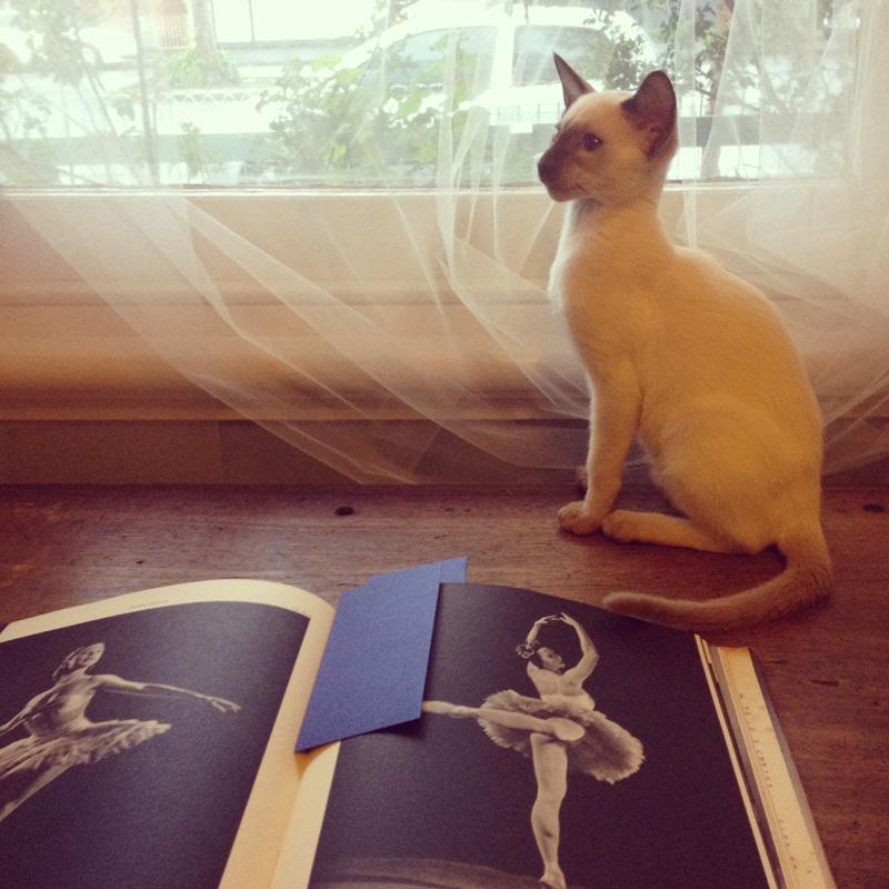 gracialouise_lenni_ballet.jpg