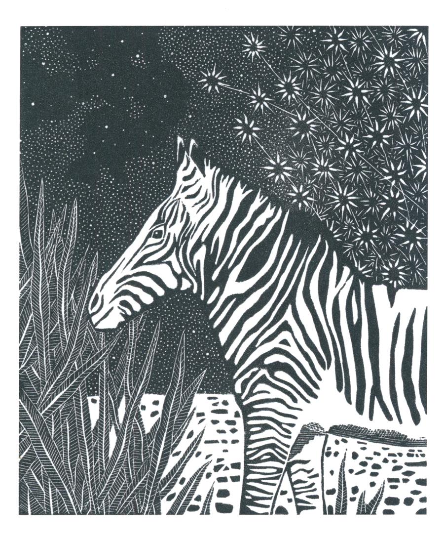 Louise Jennison,  Equus quagga , wood engraving, 2016