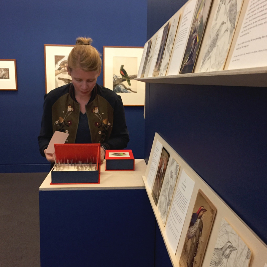 Installing our artists' book, Prattle, scoop, trembling: a flutter of Australian birds, at MPRG