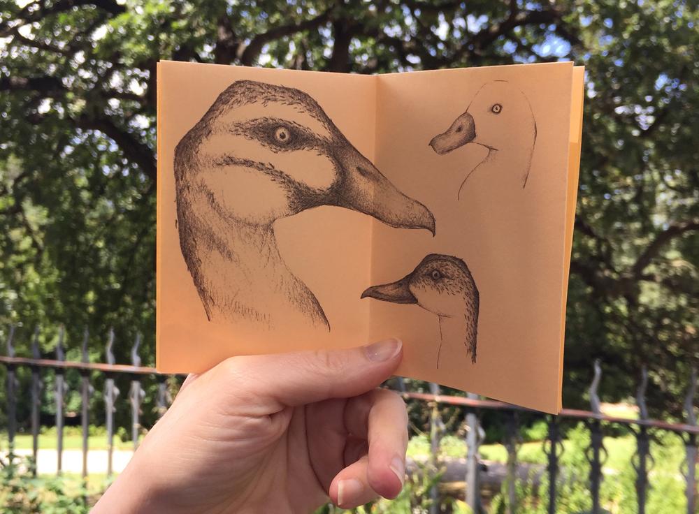louise_jennison_duckin02.jpg