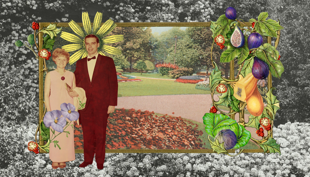 Gracia Haby & Louise Jennison,  In the garden with you , digital collage commission, 2017