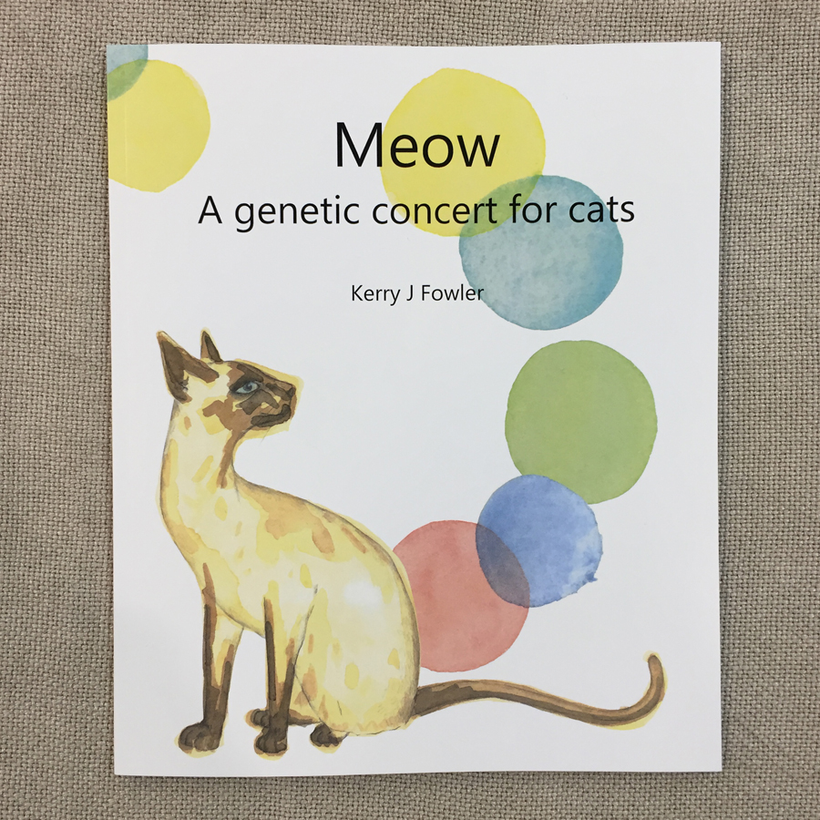 Meow: A Genetic Concert for Cats (2017) with a Siamese cat and DNA cat toys