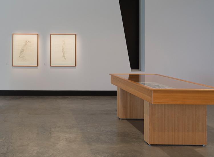 RECENT EXHIBITION:  A Whisker of Light , Maitland Regional Art Gallery, 2018