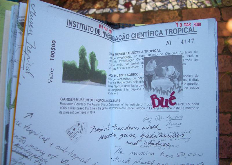 GraciaLouise_portuguese02.jpg