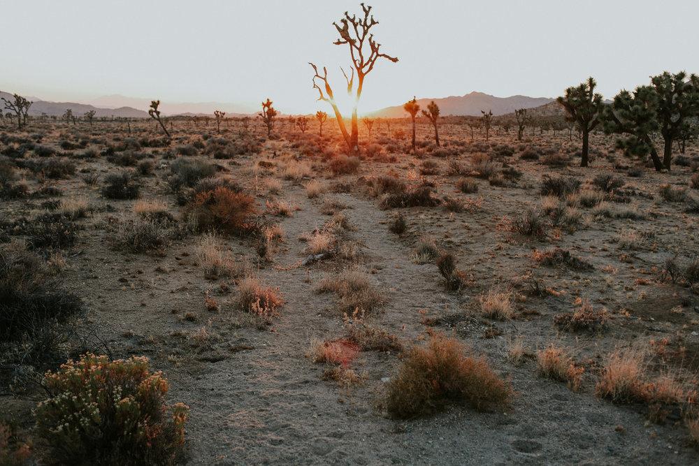 June-Palm Springs-84.jpg