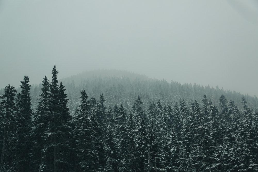 Mar.-Canada-380.jpg