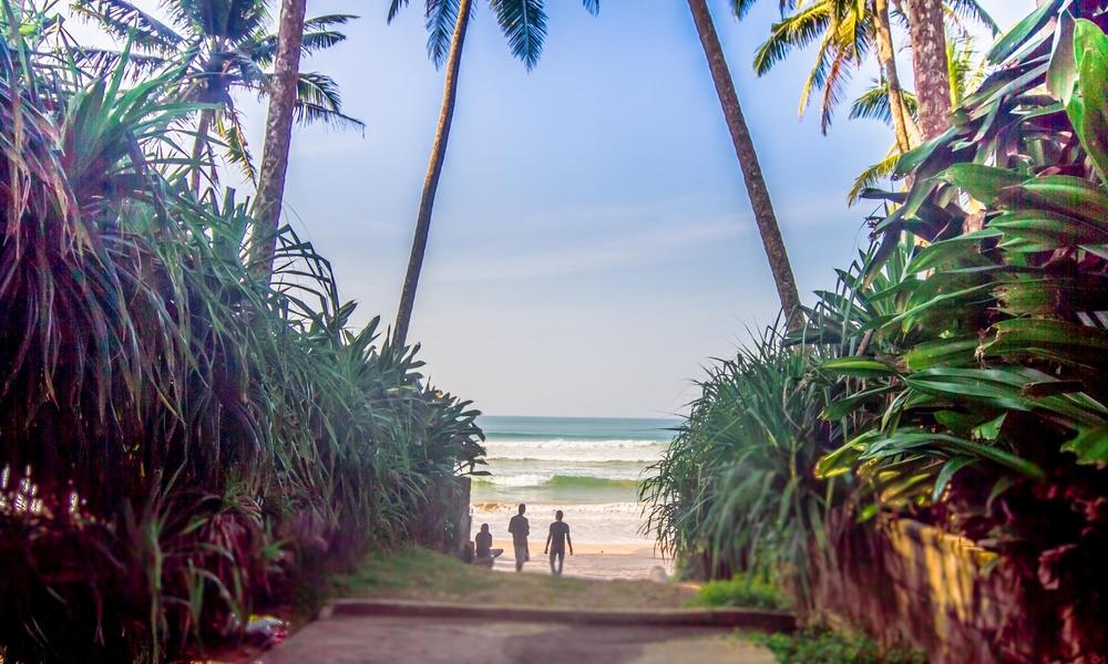 Talalla Surf Camp, Sri Lanka | Surfing Lessons, Yoga Classes, Lu