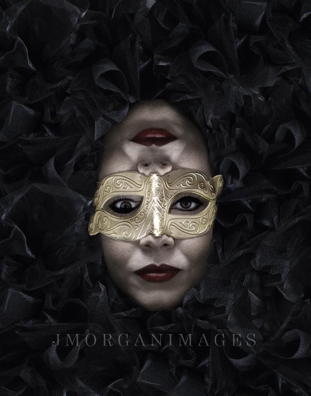 Copyright J Morgan images 2013