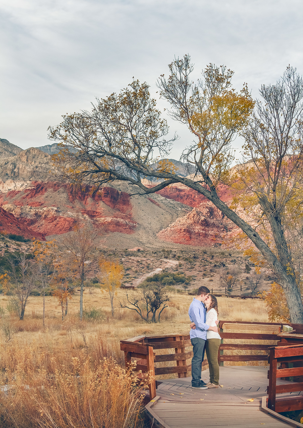 SteveandNancy_Engagements_0183_web.jpg
