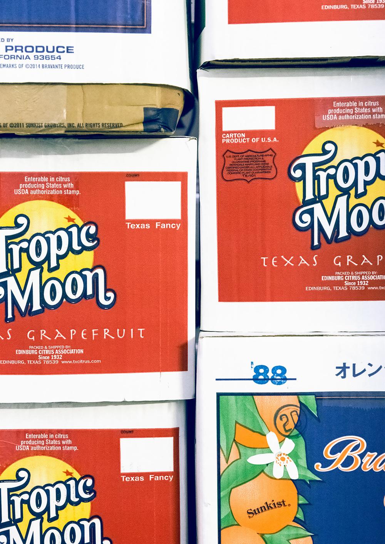 Tropic Moon boxes
