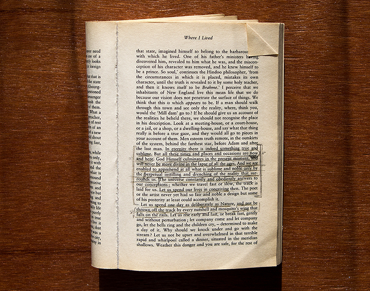 Page from Walden; or, Life in the Woods by Henry David Thoreau