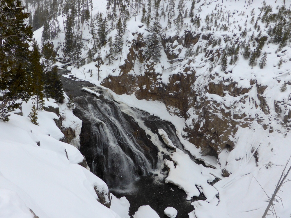 Here is Gibbon Falls on the Gibbon River. A location we normally don't get to see, however, getting turned back in Hayden Valley allowed us to catch this feature, Beryl Spring and a couple of others we normally don't see on National Geographic's tour of Yellowstone National Park.