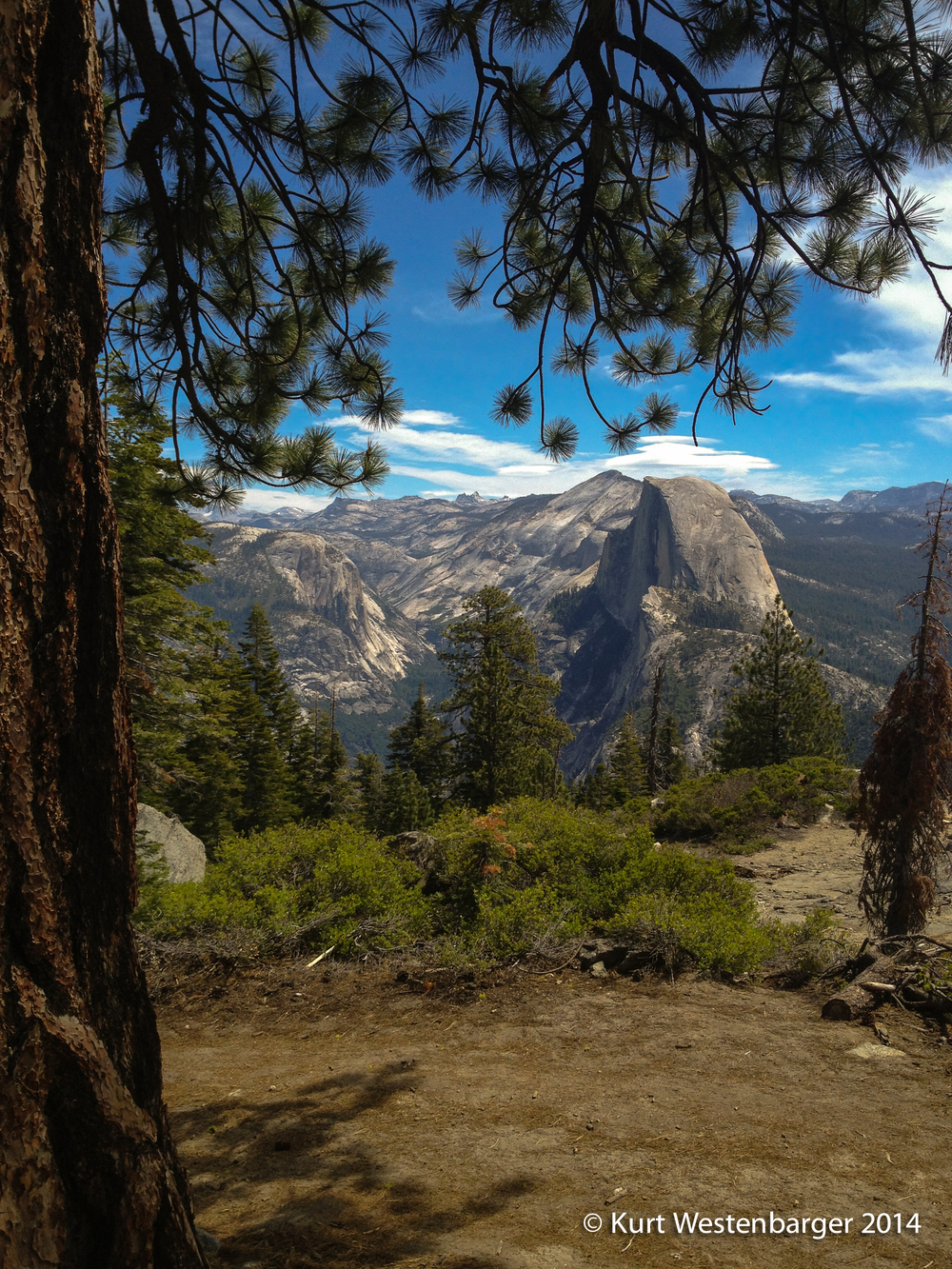 Half Dome from the Pohono Trail.