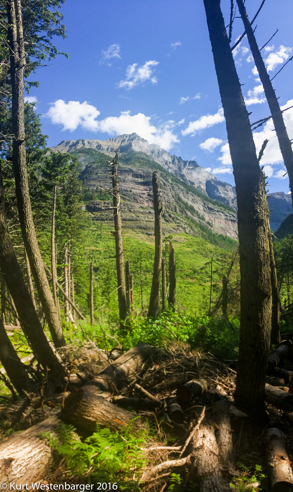 Glacier National Park 1