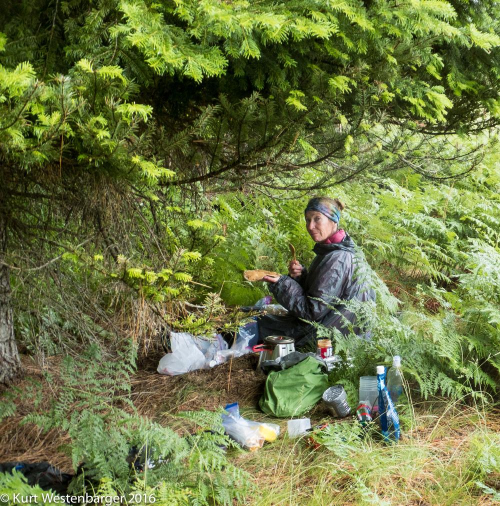 160614_Selway River Trail_098.jpg