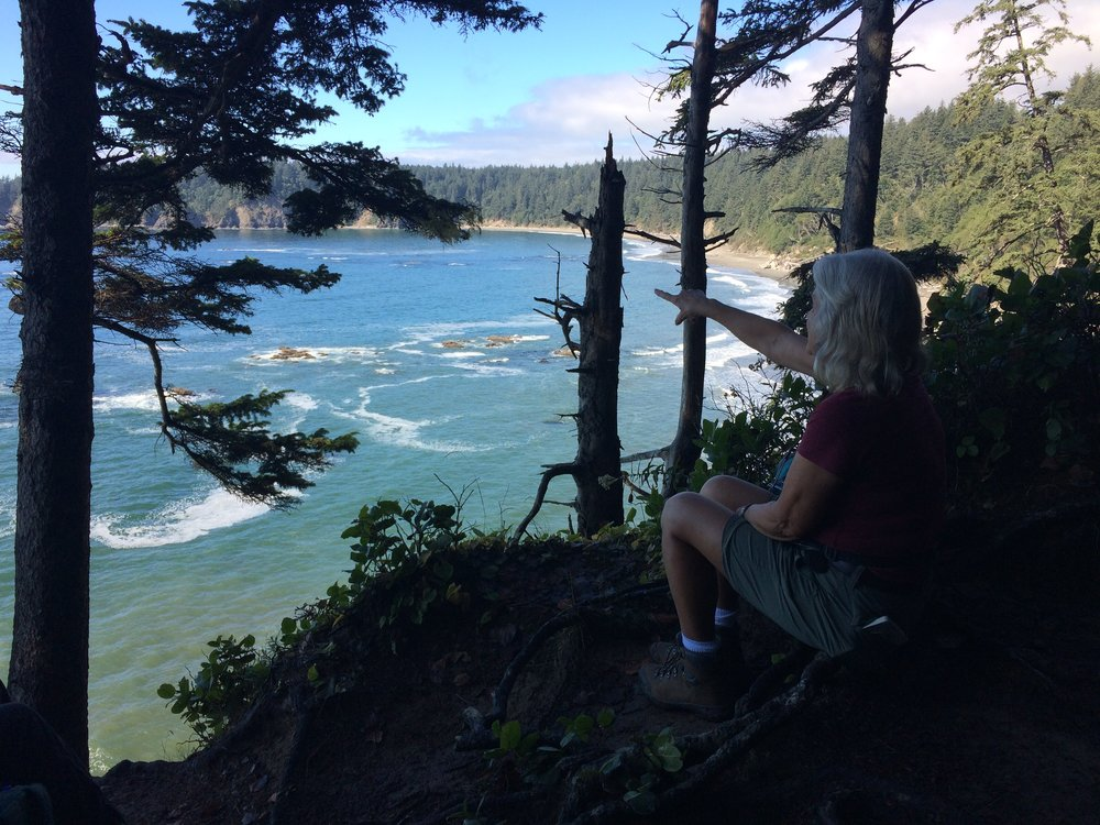 Overlooking Third Beach, Olympic National Park