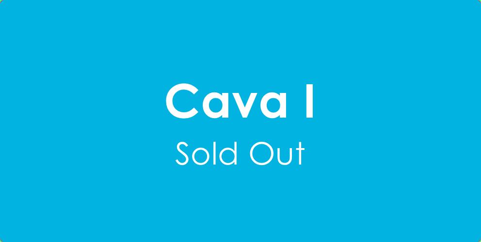 CAVA I