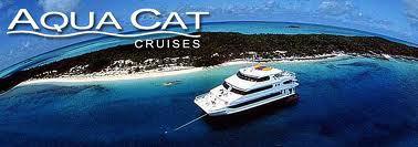 Aquacat.jpg