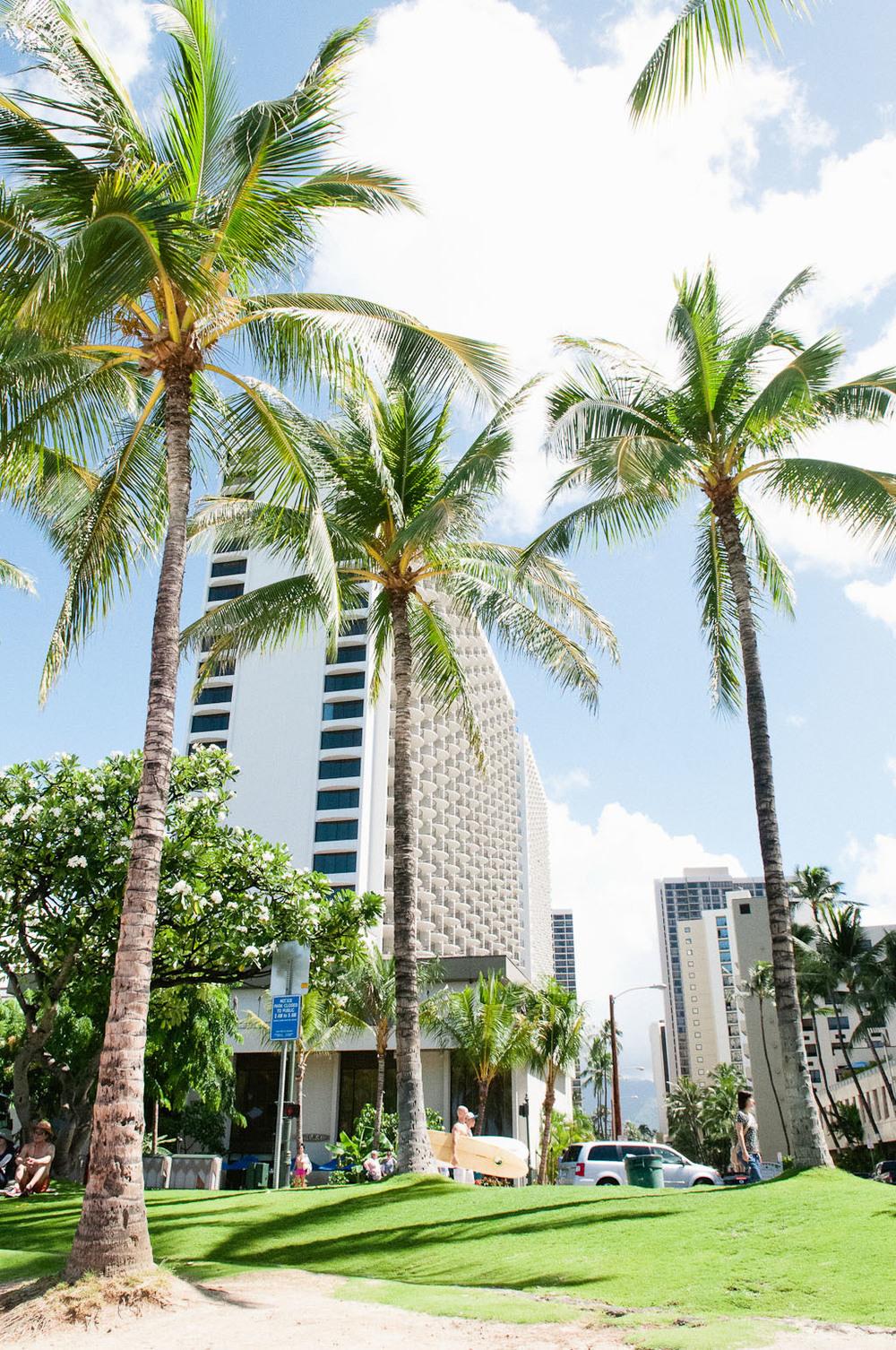 hawaii2013_7.jpg