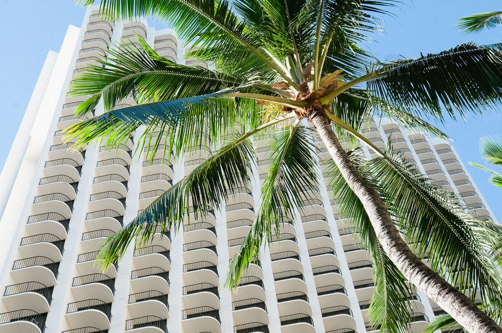 hawaii2013_10.jpg