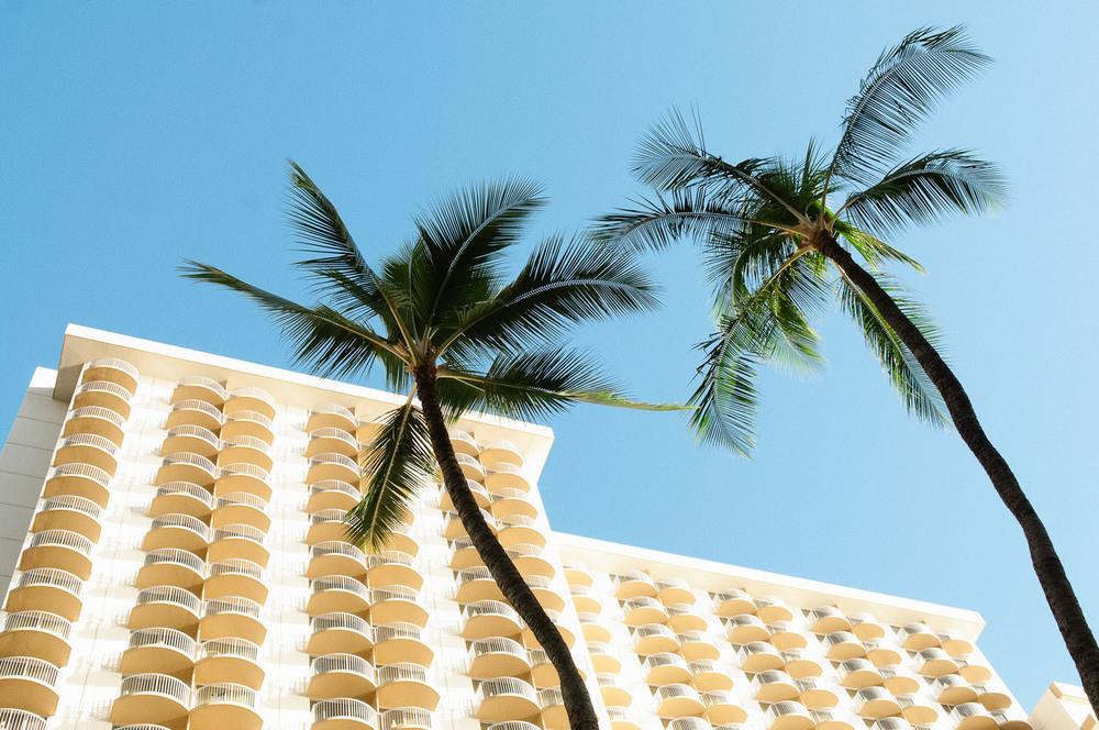 hawaii2013_14.jpg