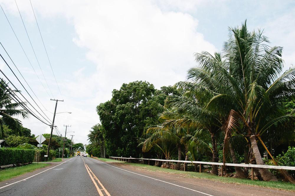 hawaii2013_66.jpg
