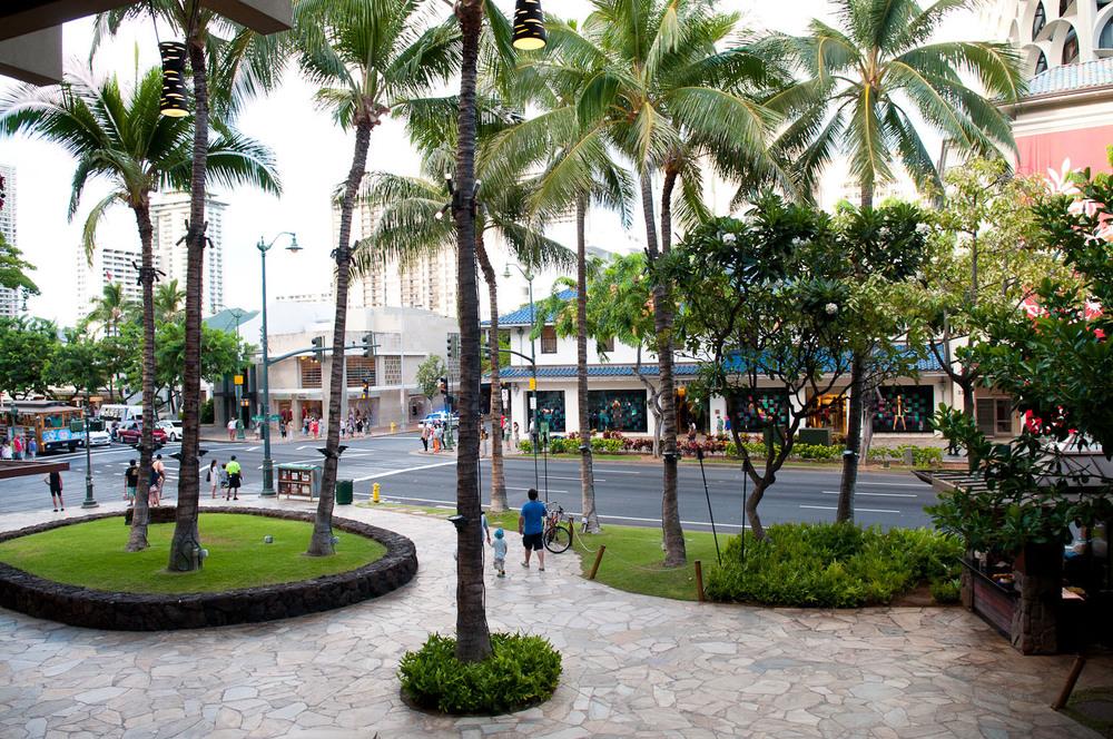 hawaii2013_83.jpg