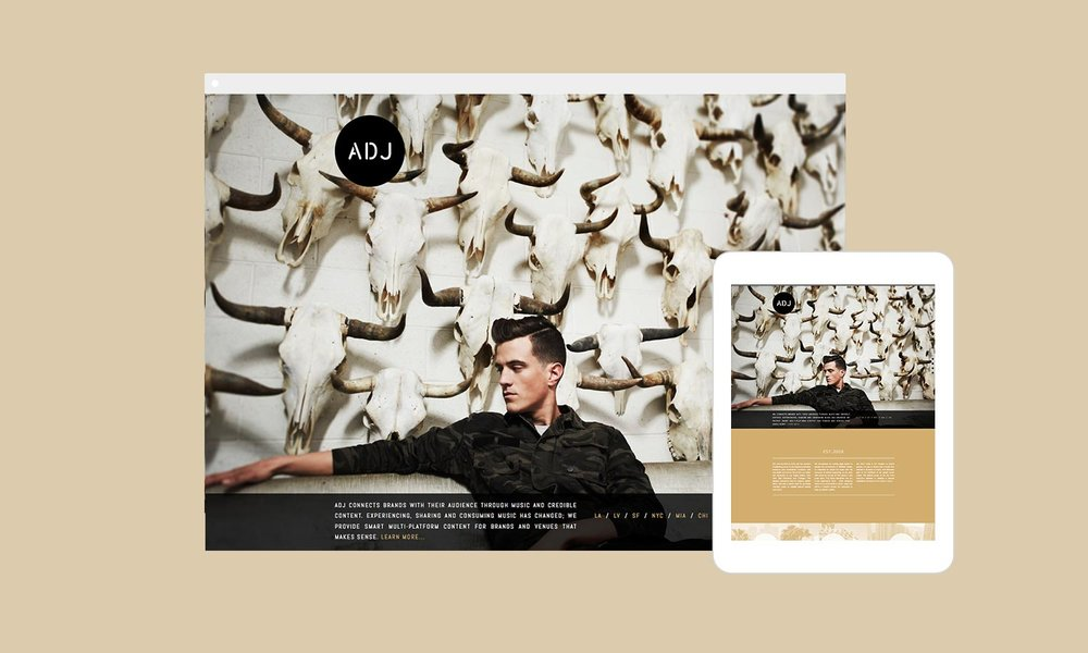 ADJ_devices.jpg