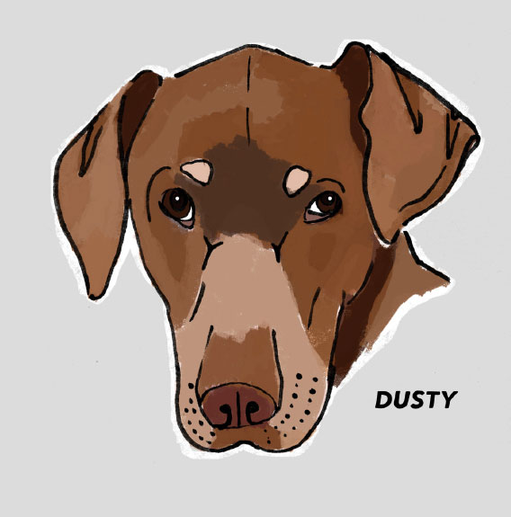 Pet Portrait of Dusty