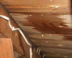 Wet Roof Deck as Seen Through Attic