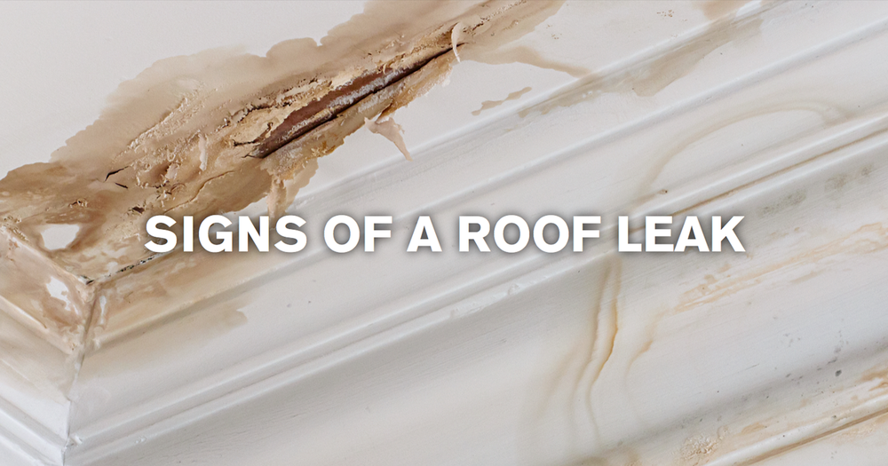 signs-of-a-roof-leak-web.png