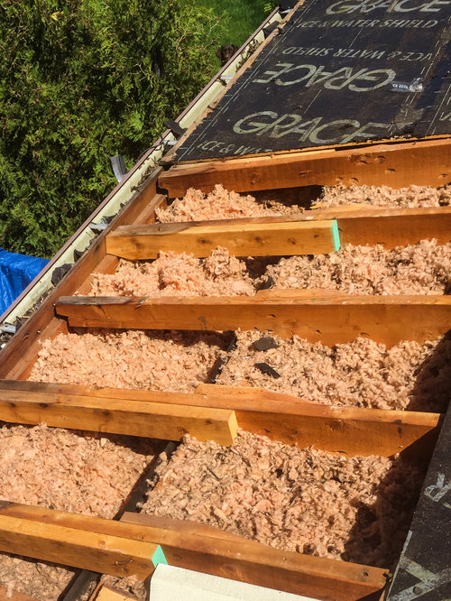 Total Mold Remediation & Proper Insulation Install