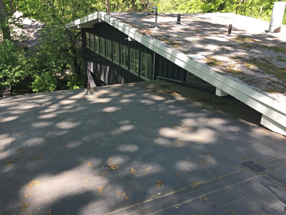 roof-before.jpg