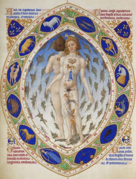 Anatomical Zodiac Person: Folio 14Très Riches Heures du Duc de Berry (1412)