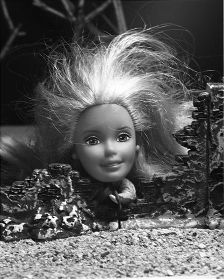 16 Barbie.jpg
