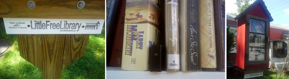 #21 Free Library, NE