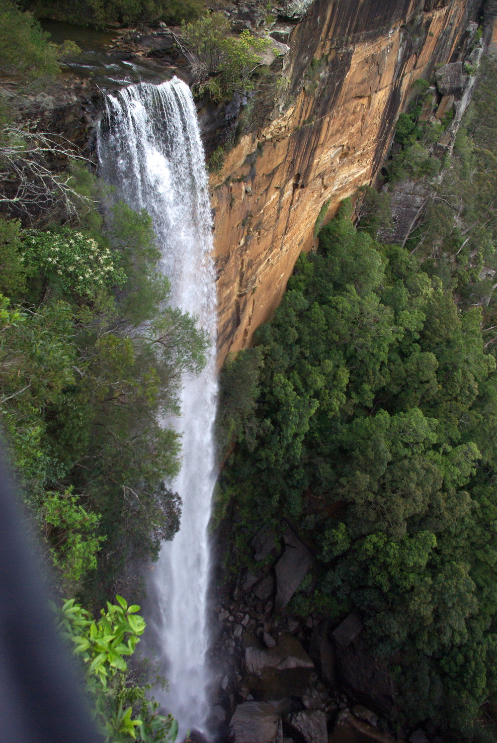 Fitzroy Falls close-up