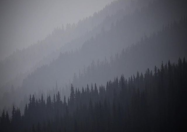 Layers and layers of smoke from wildfires spread across Washington and Oregon, gathering in the valleys of Olympic National Park. #wildfire #olympicnationalpark