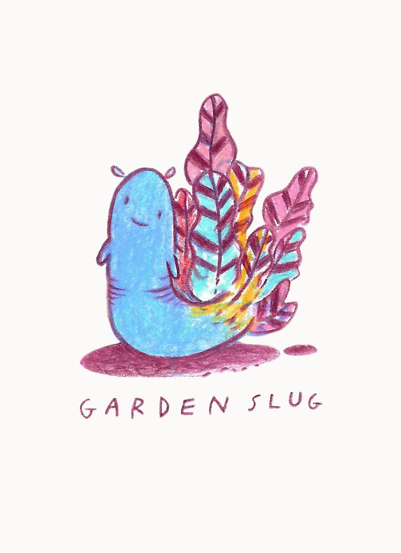 garden-slug.jpg