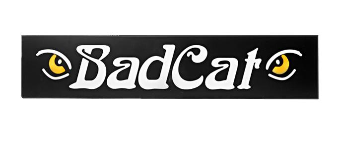 badcat3.jpg